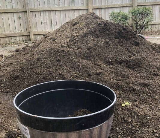 I bought too much dirt!